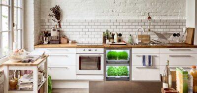 Urban Cultivator in home